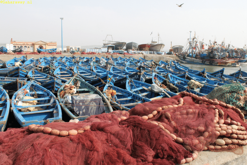 harbor of essaouira with little blue boats and fishing nets