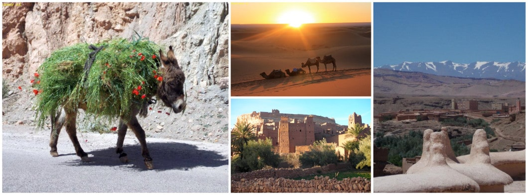 Moroccan travels and desert tours